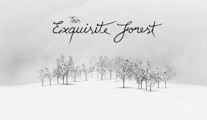 Trop Bon Trop Com - #TBTC Google : The Exquisite Forest 3