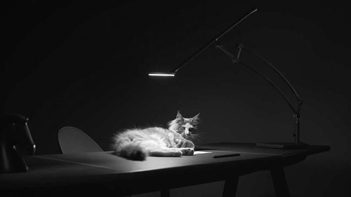 Trop Bon Trop Com - #TBTC Hermès : Collection Luminaires