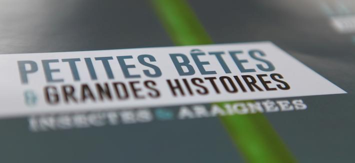 Le-Mois-De-L-Environnement-1-Avril-3-Mai-Ile-De-Ré-Je-Participe-Land-Art-Event-France-2015-Pub-Presse-Publicité-TBTC-G-Communication-04