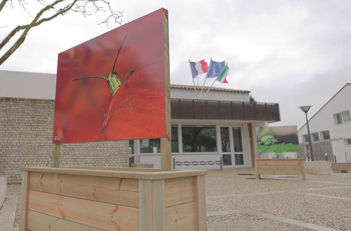 Le-Mois-De-L-Environnement-1-Avril-3-Mai-Ile-De-Ré-Je-Participe-Land-Art-Event-France-2015-Pub-Presse-Publicité-TBTC-G-Communication-07