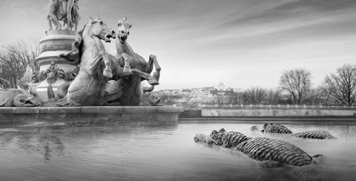 Trop Bon Trop Com - #TBTC Le Parc Zoologique de Paris : Paris redevient sauvage 4