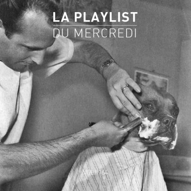 Playlist-164 Chien et son barbier