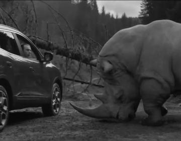 Renault Drive rhinocéros