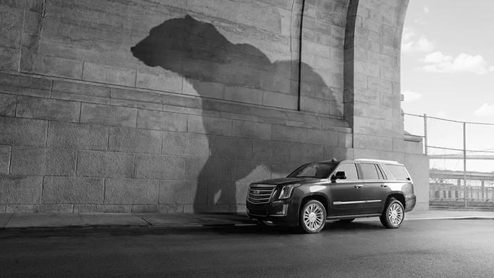 Cadillac Shadows