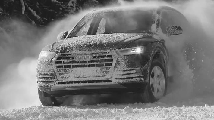 Audi Goout