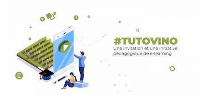 #TutoVino Vin&Societe Campagne TBTC
