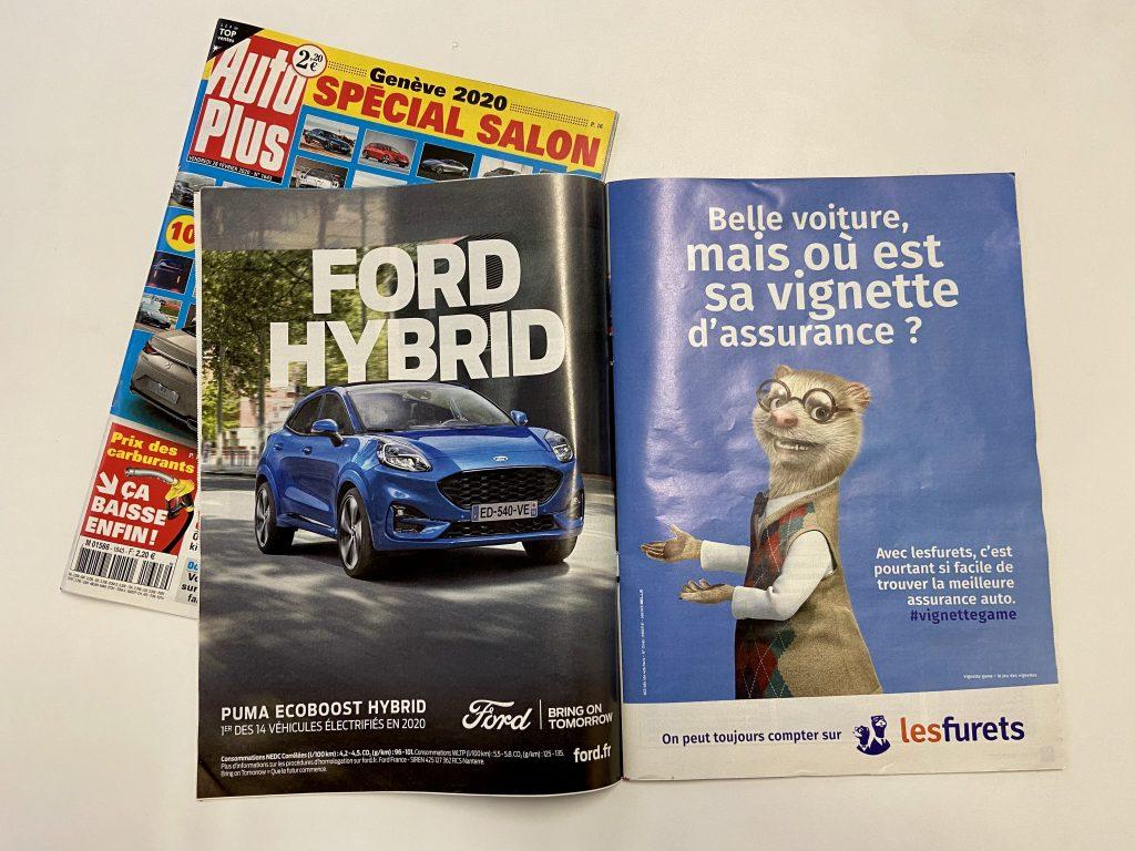 Hervé et François sont les furets les plus connus de France. Arrivés en 2012, les deux associés sont les mascottes du site Lesfurets.com, un comparateur d'assurance.